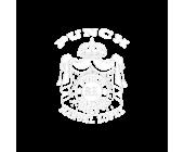 Punch (3)